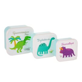 Lunchbox set dino's