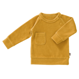 Sweater velours mimosa